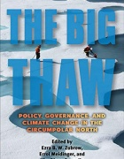 Big Thaw book cover.